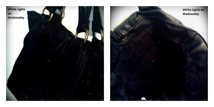 purses 5