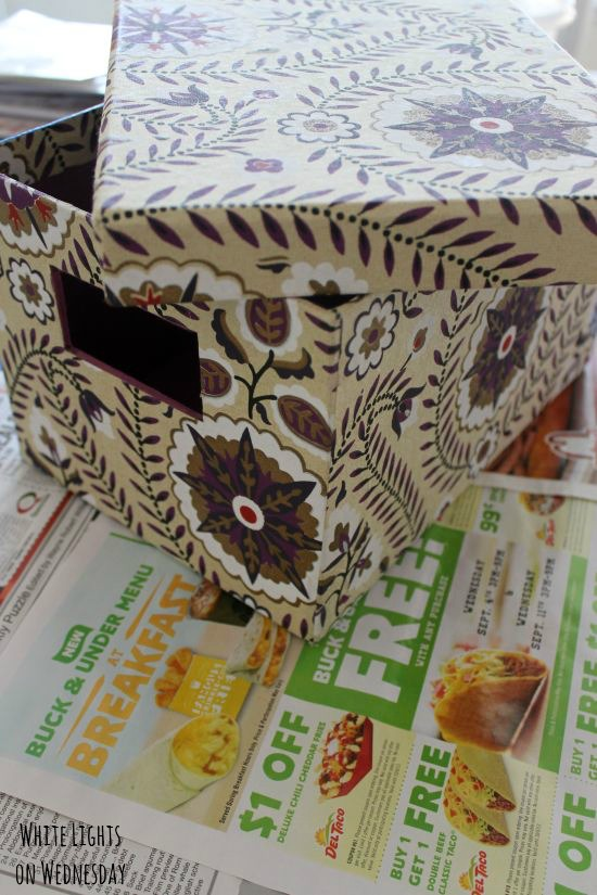 DIY Butterfly Gardne Box 3