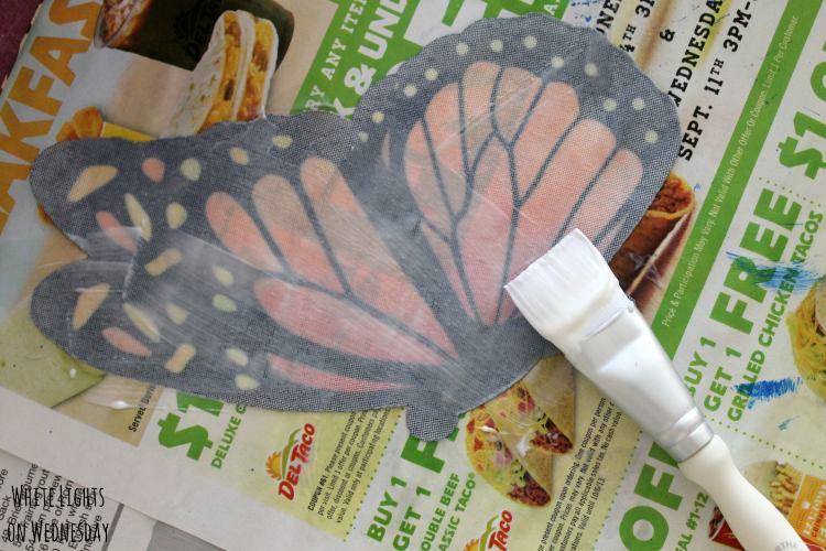 DIY Butterfly Gardne Box 5