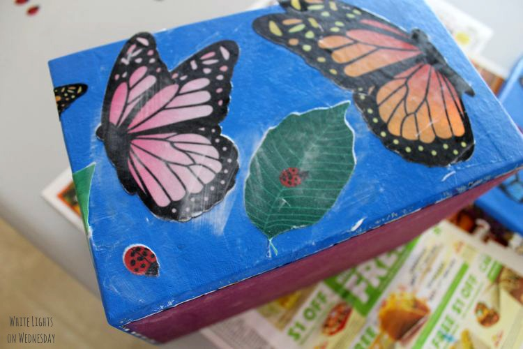 DIY Butterfly Gardne Box 6