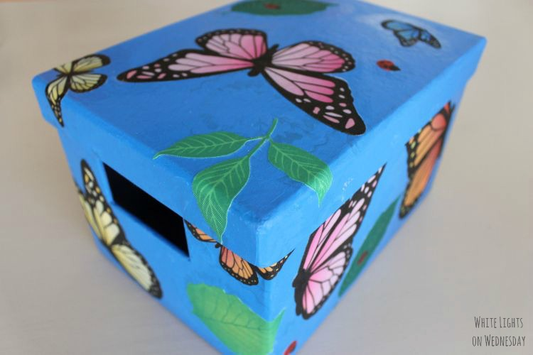 DIY Butterfly Gardne Box 7