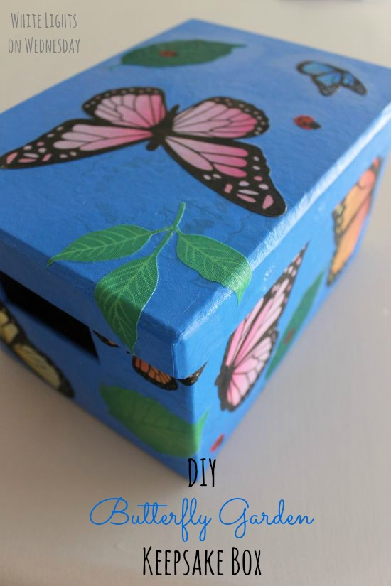 DIY Butterfly Gardne Box 8