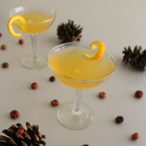 Spiked Holiday Punch 2