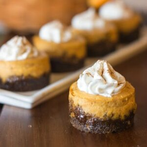 Mini-Pumpkin-Cheesecake-Gingersnap-Crust-21