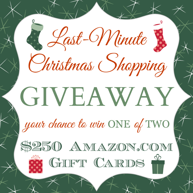 Last Minute Christmas Shopping Giveaway  {Closed}