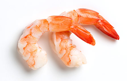 Shrimp_main