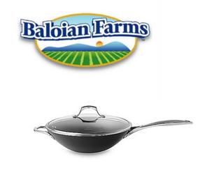 Baloian