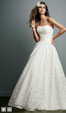 Lace Ball Gown with Intricate Embroidered Details Style WG3512