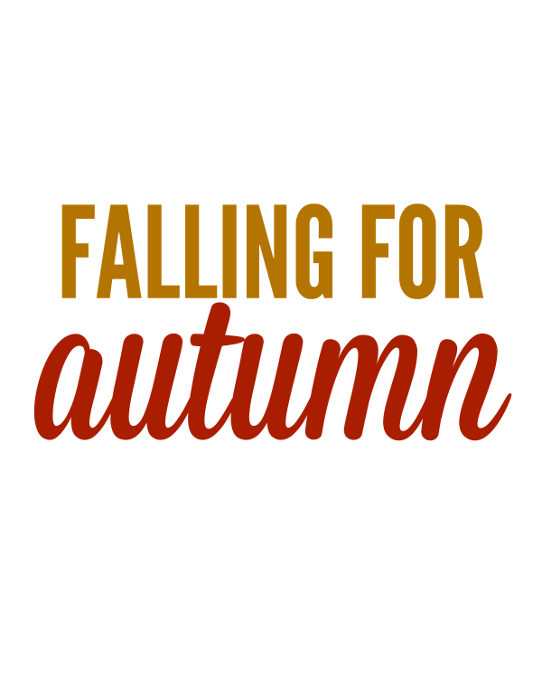 Falling For Autumn  | White Lights on Wednesday
