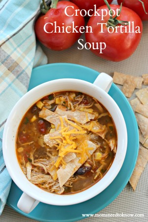 crockpot-chicken-tortilla-soup-easy-chicken-recipes