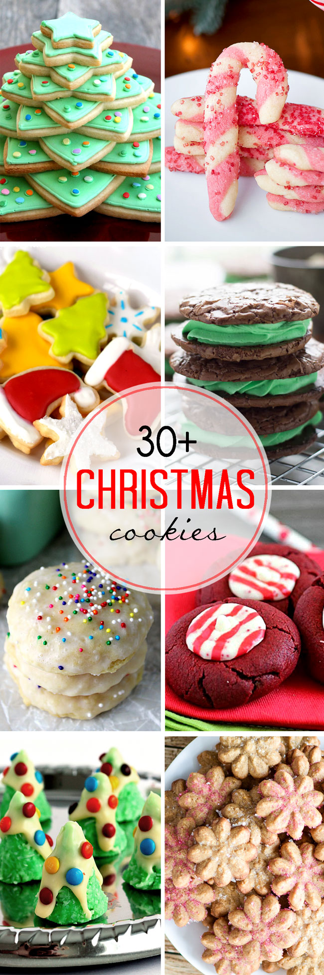 More Than 30 Christmas Cookie Recipes! | White Lights on Wednesday